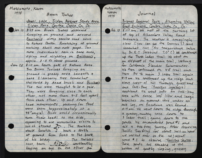 how to write a field journal